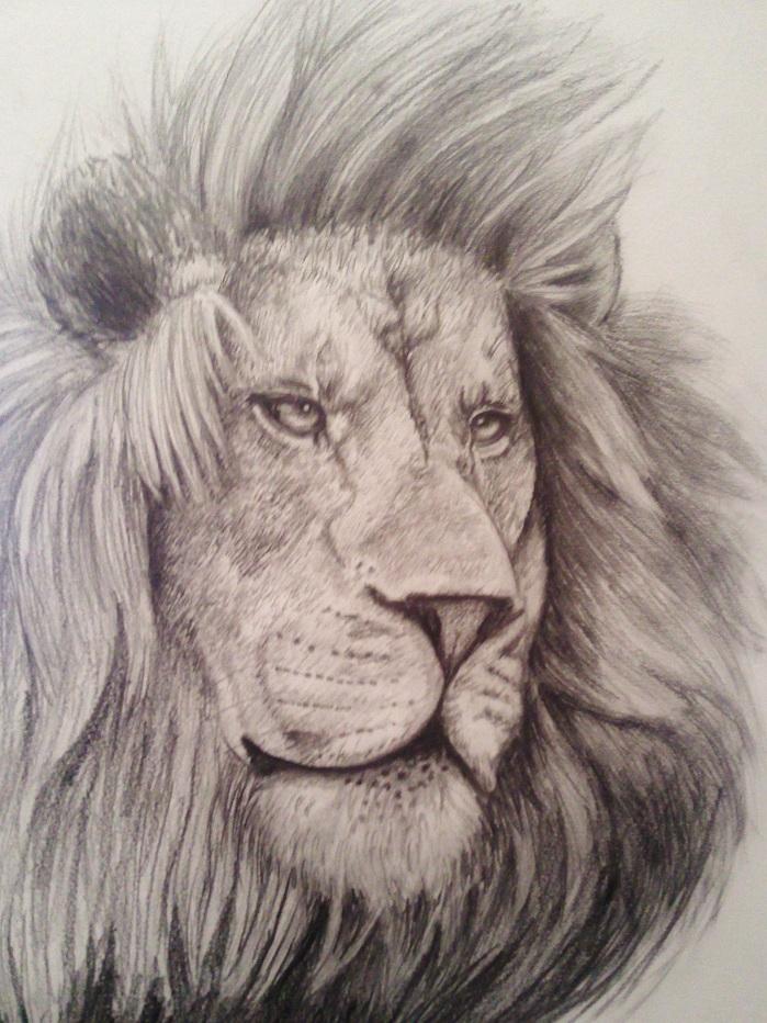 leon  My own Dimension