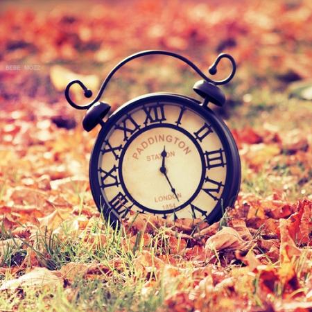 lovely_time_by_popoks-d4cj5nj